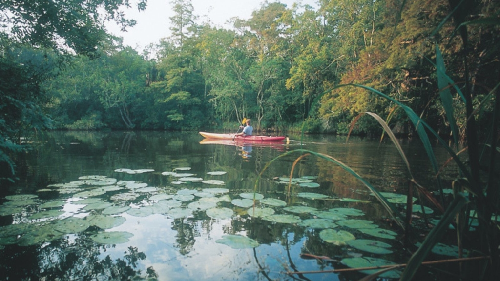 image of a person kayaking in wewahitchka